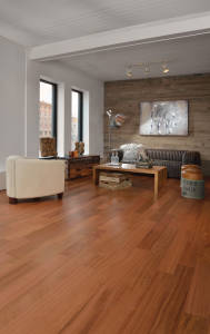Brazilian Cherry Natural - Room