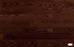 Red Oak Umbria