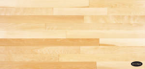 Yellow Birch - Natural SB